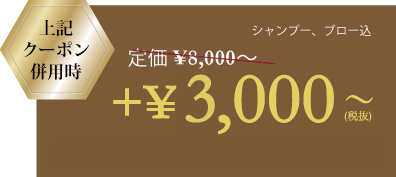 menu-3-1